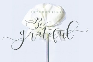 Be Grateful Script wedding Signature