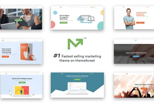 Marketing Pro – SEO, Landing, Marketing Theme