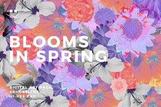 Blooms in Spring