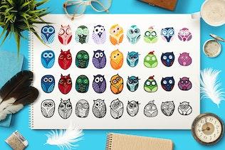 Nice Owls Set