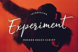 Experiment Brush Script