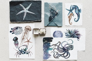 Watercolor ocean creatures set
