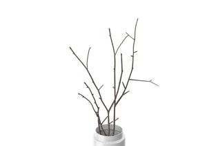 Vase with Branches